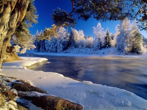 frozen_wild_river-800x600